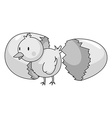 Little chick coming out of eggshell vector image vector image