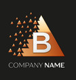 silver letter b logo symbol in the triangle shape vector image vector image