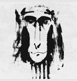 watercolor portrait of grey furry monkey vector image