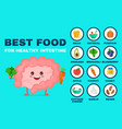 best food for strong intestine vector image vector image
