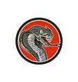 Cobra Viper Snake Circle Retro vector image vector image