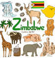 Collection of Zimbabwe icons vector image vector image