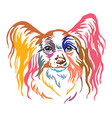 colorful decorative portrait of papillon dog vector image vector image