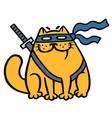 cute fat ninja cat in a mask and a sword vector image