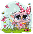 cute owl with flowers and butterflies vector image