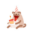 cute pug dog in party hat with birthday cake vector image vector image