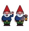 Garden gnomes vector image