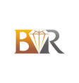 letter br diamond vector image