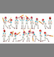 professional cricket player equipped vector image