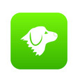 retriever dog icon digital green vector image vector image