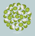 round pattern green coconut nuts on a blue vector image