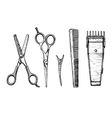 set hairdressers tools vector image