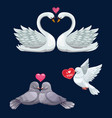 loving bird couples with hearts valentines day vector image