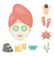 spa salon and equipment cartoon icons in set vector image vector image