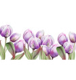 tulip flowers watercolor spring summer poster vector image vector image