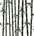 bamboo shoots vector image vector image