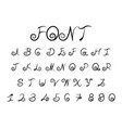 beautiful font vector image