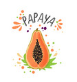 hand draw colored papaya vector image vector image