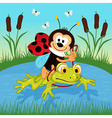 ladybug riding on frog vector image vector image