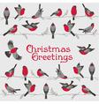 Retro Christmas Card - Winter Birds vector image vector image