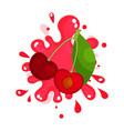 ripe cherries juice splashing colorful fresh vector image vector image