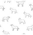 seamless pattern with dogs of various breeds hand vector image vector image