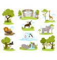 zoo animals cartoon characters set isolated vector image
