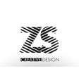 zs z s lines letter design with creative elegant vector image vector image