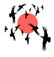 black crows circling in sun vector image