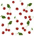 Cherry seamless pattern vector image