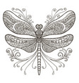 dragonfly coloring vector image