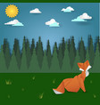 fox on forest meadow landscape vector image