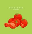 fresh ripe tomatoes vector image vector image