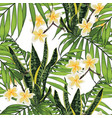 green tropical palms and pink protea flowers vector image vector image