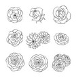 hand drawn set rose camellia peony flowers vector image vector image