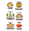 mexican fast food snacks and desserts vector image