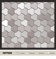 pattern wallpaper silver vector image vector image