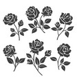 rose silhouettes decorative set vector image vector image