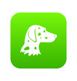 dalmatians dog icon digital green vector image vector image