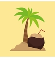 palm tree cocktail coconut sand vector image