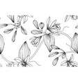 seamless pattern vanilla flower and leaf hand vector image vector image