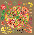 set of ingredients for making pizza vector image