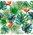tropical dark green leaves palm trees and vector image vector image