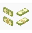 Isometric bundles of paper money vector image