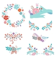 Beautiful collection of floral elements vector image vector image