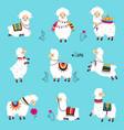 cute fluffy llama or alpaca camelid pack animal vector image