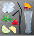 refreshing drink ingredients vector image