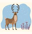 reindeer stand in winter forest hart antlers vector image vector image