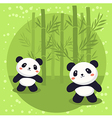 Two Little Panda Bear Bamboo vector image