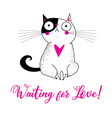 a lovely cat in love with a heart vector image vector image